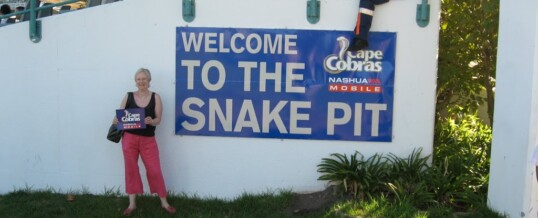 Welcome To The Snake Pit!