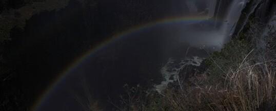 Rainbows In The Night