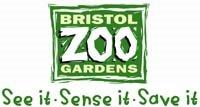 'Monkey Business' at Bristol Zoo!